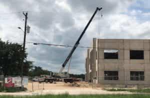 cranes, Austin